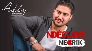 Mohamed Adly - Ndéclaré Nebrik (EXCLUSIVE Lyric Clip) | (محمد عدلي - نديكلاري نبغيك (حصريأ