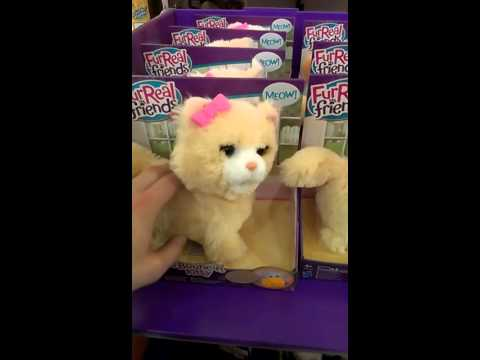 This Toy Cat Is The Stuff Of Nightmares