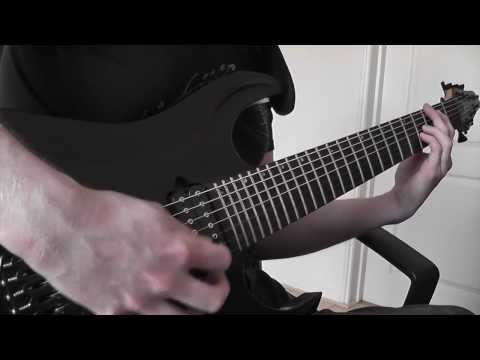 Sylvania - Fallen (Progressive Metal - Guitar Playthrough)