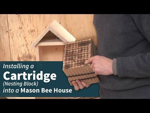Using a Mason Bee Cartridge (Nesting Block)