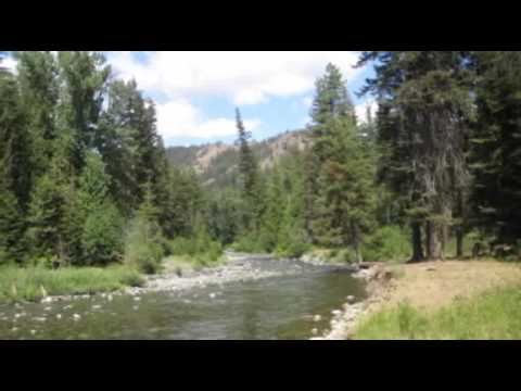 Fly fishing washington state small streams and ponds by for Fly fishing washington state