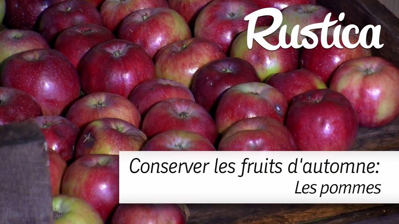 Comment conserver les pommes youtube - Comment conserver pomme de terre ...