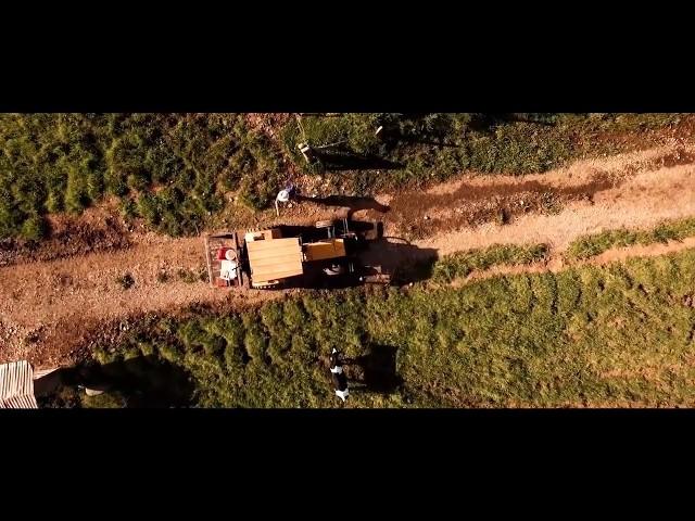 Produção de Queijos Finos com Ordenha Robotizada | Fazenda Cichelero, Brasil