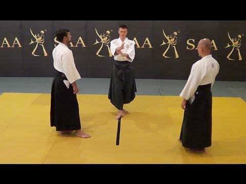 Aikido Kamae Instructional