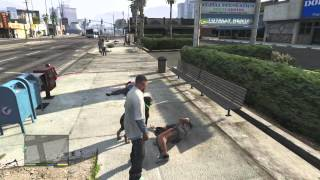 GTA V Teaching Chop All The Wrong Moves (Ends Badly)
