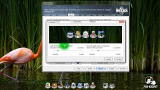 Nexus Dock Descarga Y Configuración (Barra 3D Para