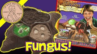 Harry Potter Professor Sprout's Fungus Field Trip Edible Activity Candy Making Set