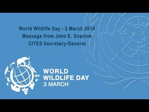 Message from the CITES Secretary-General for World Wildlife Day