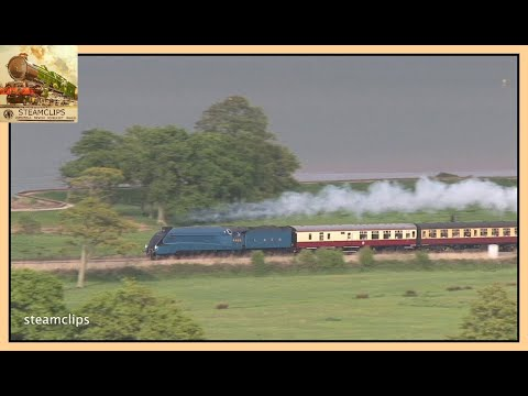 Blue A4 at High Speed on the Exe Estuary. The Cathedrals Express. 21 May 2013