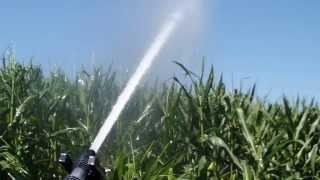 Irrigazione Mais 2013 Parte 1