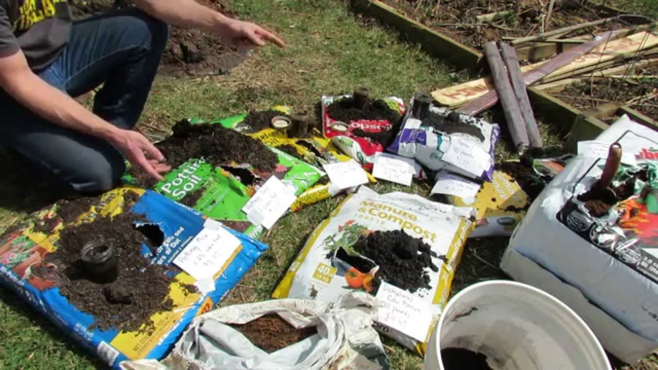 Basics On Buying Container Mixes Potting Mix Potting Soil Garden Soil Top Soils And Peat