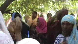 Helle Oromo  Miccata