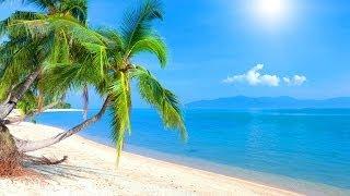 Tropical Island Music Caribbean Dream
