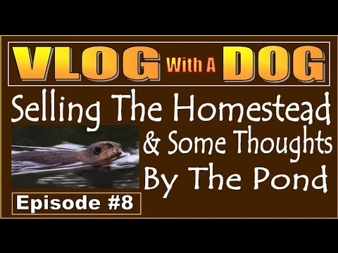 VLOG #8. SELLING THE HOMESTEAD AND SHARING THOUGHTS BY THE POND.