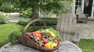 Starting A Vegetable Garden
