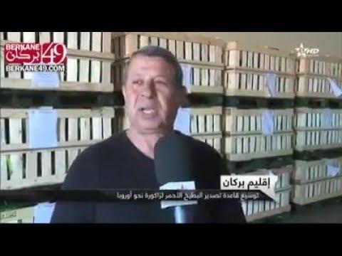 """روبرتاج..أحمد تاريفيت يحرك الاقتصاد الفلاحي ببركان بتصدير """"الدليع"""""""