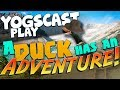 Ducking Tuesday - A Duck Has An Adventure