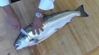 Como filetear un salmón profesionalmente