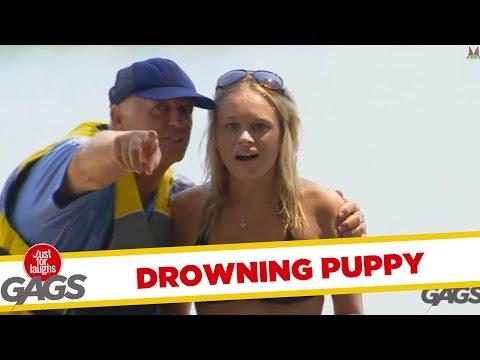 Drowning Puppy Prank