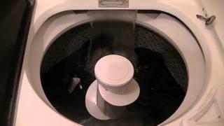 1994 Kenmore 80 Series Washing Machine Load 3