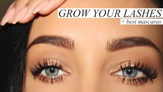 GROW YOUR LASHES + BEST MASCARAS | Stephanie Ledda