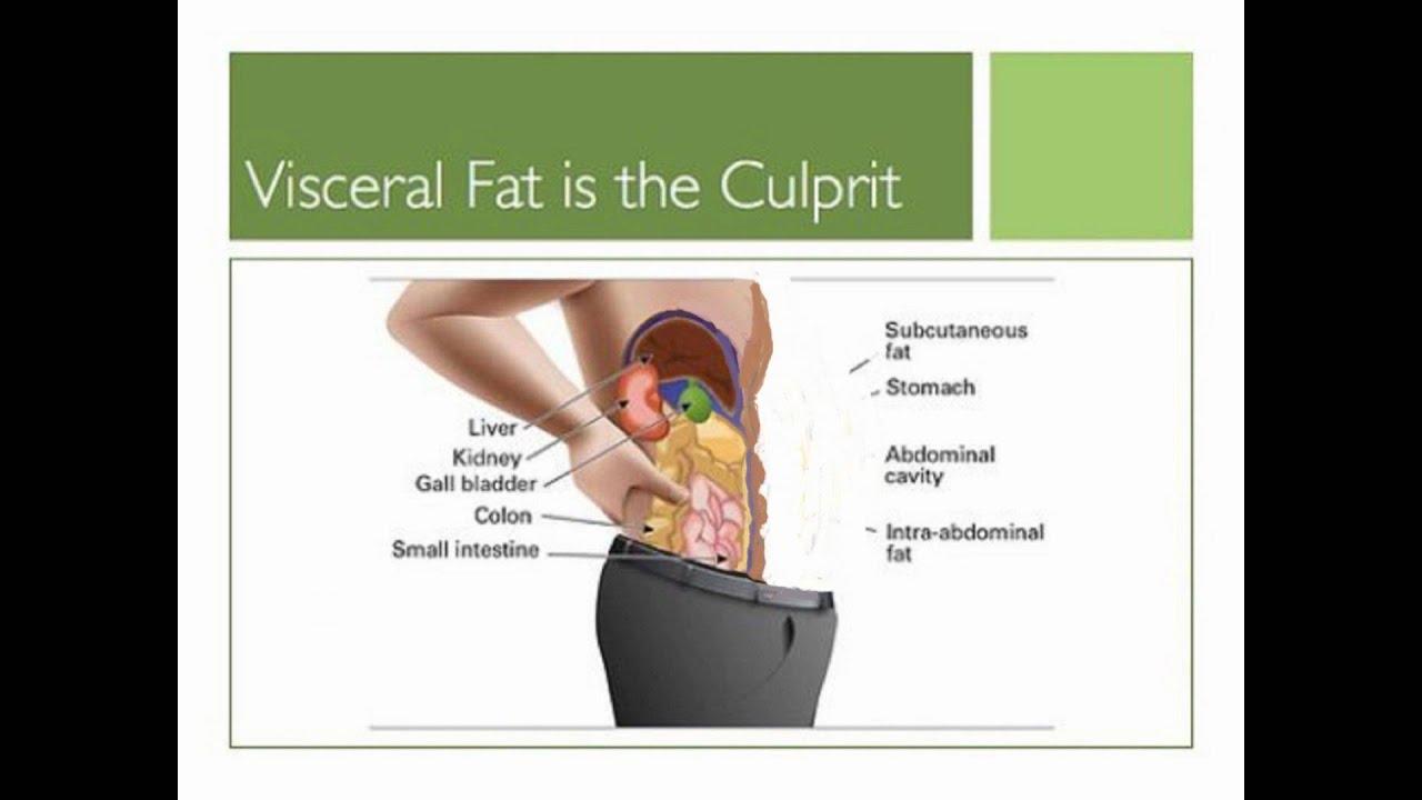 Natural Cure For Visceral Fat
