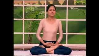 Хатха Йога для всех от ученика Дхирендры Брахмачари