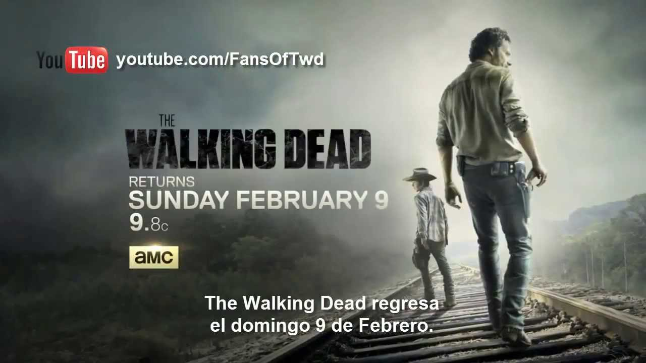Related Pictures the walking dead don t be an idiot
