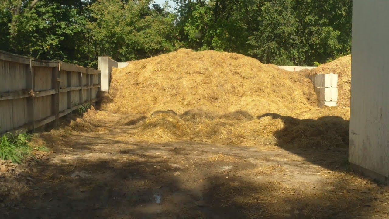 Free Horse Manure Straw For Our Compost Youtube