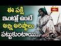 ఈ పక్షి ఇంట్లో ఉంటే అన్ని అరిష్టాలు పట్టుకుంటాయి || Dharma Sandehalu || Bhakthi TV