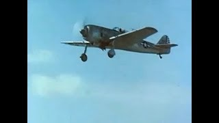 Captured Nakajima Ki-84 & Mitsubishi J2M & G4M Flight