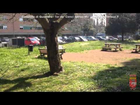 Via Frignani il parco con le fontanelle...chiuse