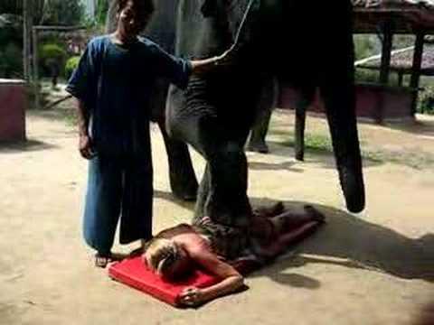 Elefante Massagista