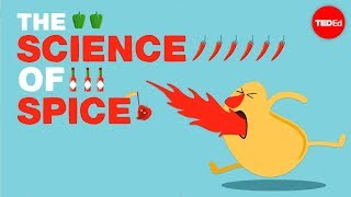 The Science of Spiciness