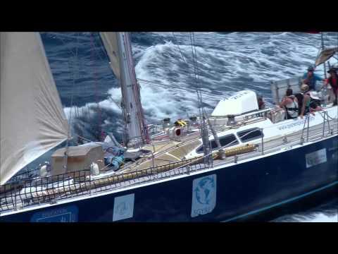 'Plastic Ocean' Episode Teaser