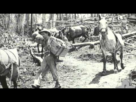 Australians at War. 08 - New Guinea (WW2)