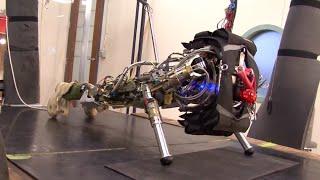 Rocky V: Robots Reach Singularity