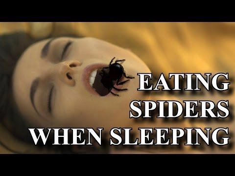 Eating spiders in your sleep?