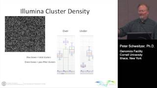 Quantifying Illumina Next-Gen Sequencing Libraries using digital PCR on the QuantStudio 3D
