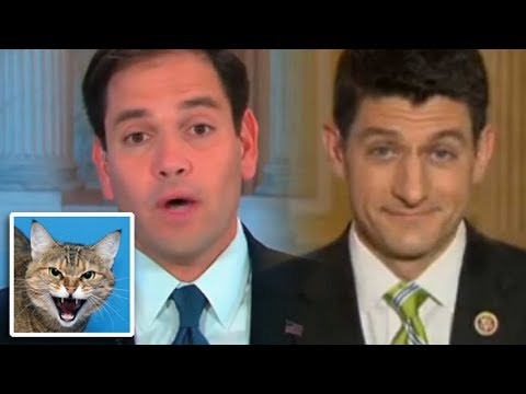Paul Ryan And Marco Rubio Squabble Over Budget - Meow!