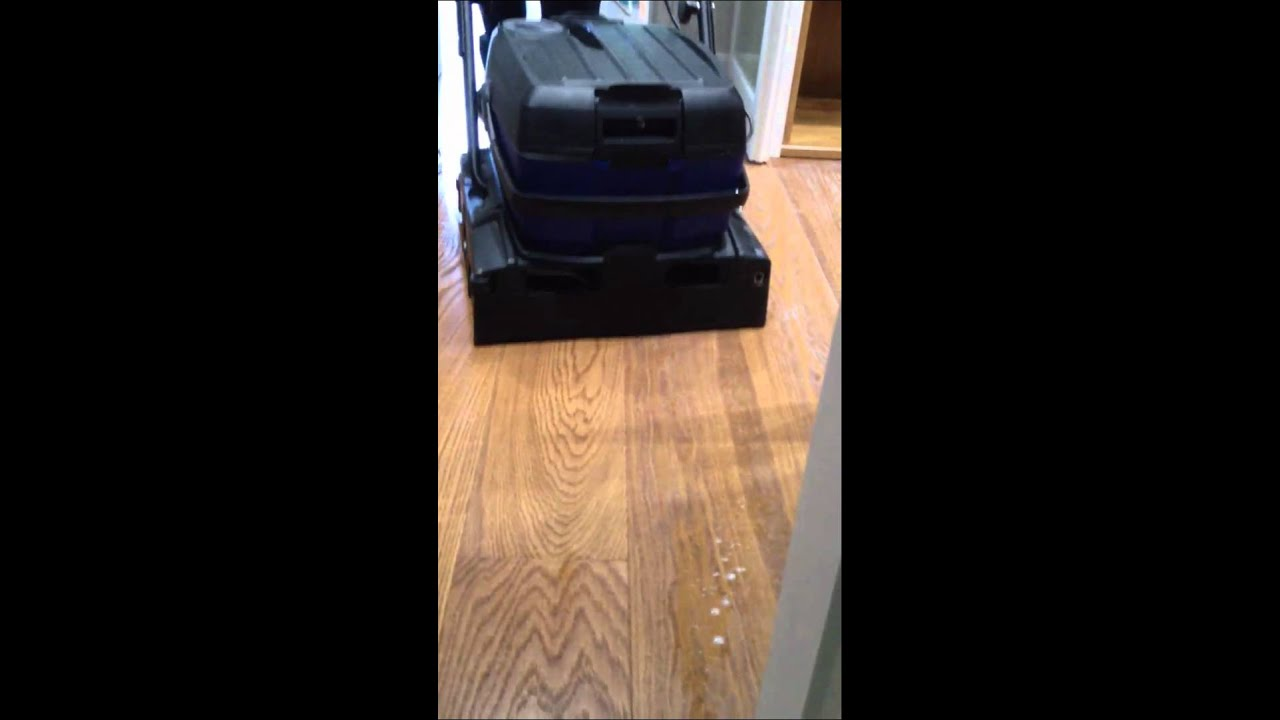 Detecpa 2 como limpiar un suelo de madera despu s de una - Limpiar suelos muy sucios ...