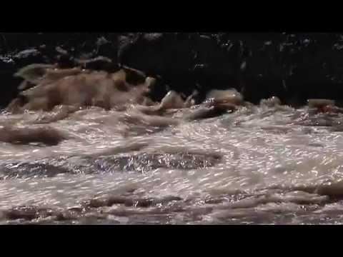 تحقيق استقصائي لوطن والمرصد: بلدية البيرة أنفقت مليون ونصف المليون شيقل على تكرير مياه المستوطنات