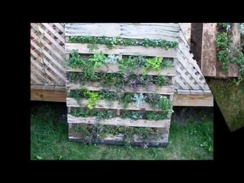 Building a Vertical Pallet Garden with Chef Janie 11.wmv