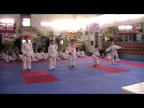 Экзамен по каратэ 24 ноября 2013 года в клубе Тигренок.ч.2