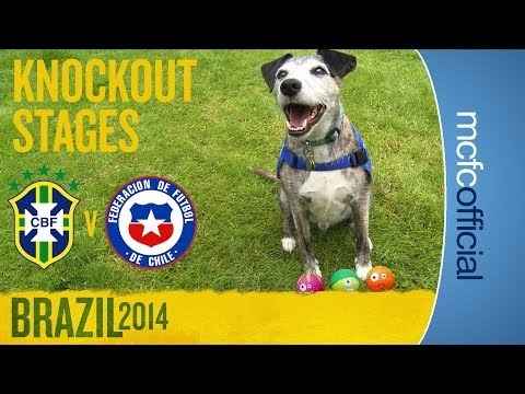 Will Brazil beat Chile? | DOUGIE THE DOG WORLD CUP PREDICTIONS