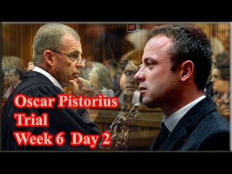 Oscar Pistorius Trial: Tuesday 15 April 2014, Session 1