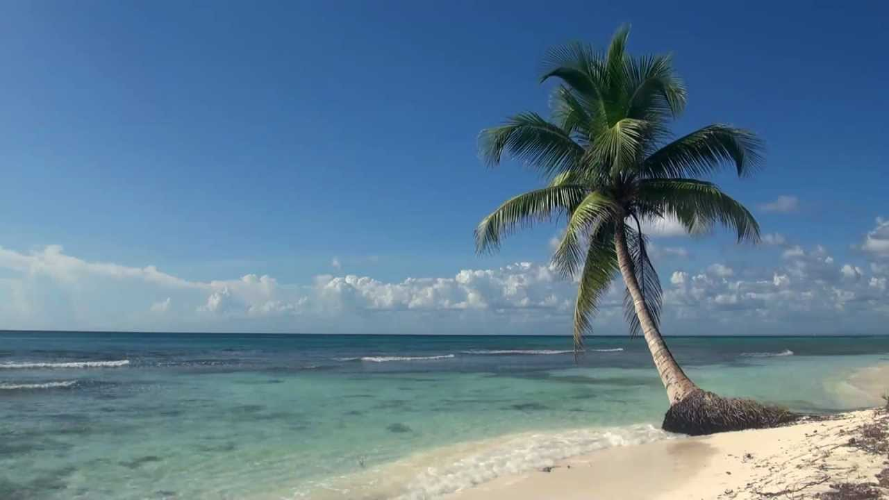 Relaxing 3 Hour Video Of A Tropical Beach With Blue Sky