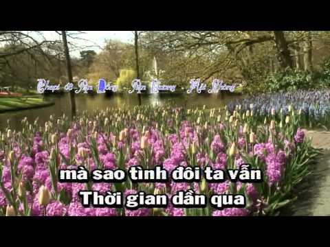 [Karaoke beat] Cảm ơn tình yêu tôi - Tone nam Full beat