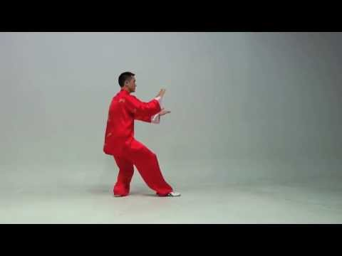 The Kung Fu Tai Chi Day Simplified 24 Routine.