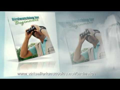 Birdwatching - Beginners guide to Birdwatching
